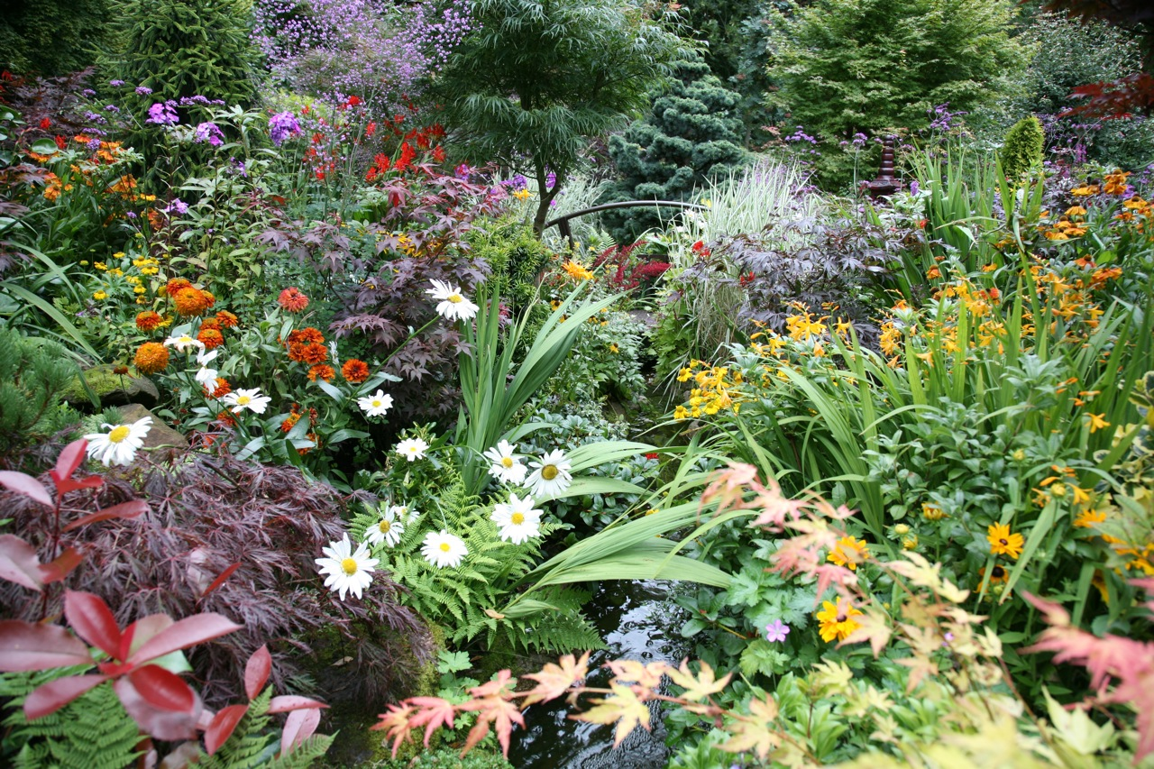 perennial flower garden ideas photograph beautiful bulbs