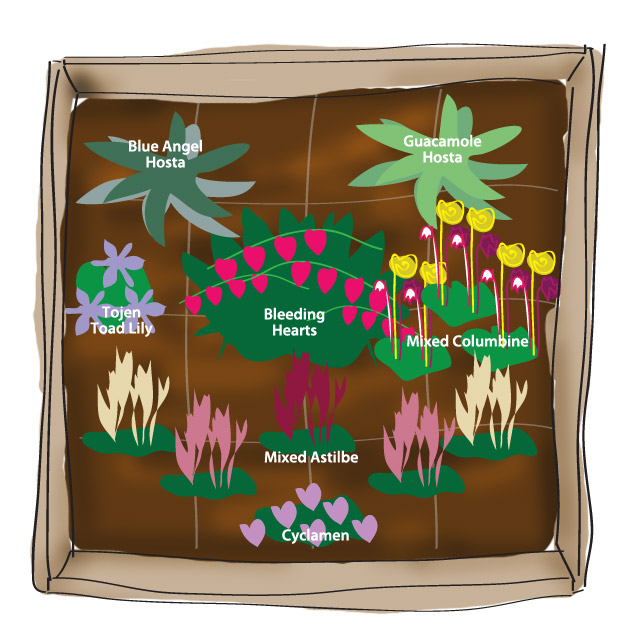 3 colorful shade garden plans flower bulb crazy for Perennial garden design zone 9